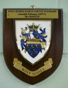 countystandard2009