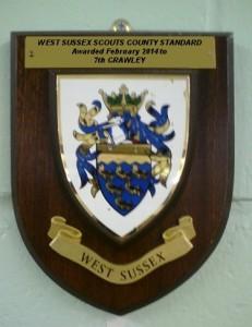countystandard2014