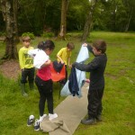 Cub Camp 140
