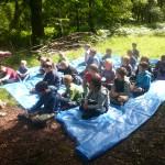 Cub Camp 237